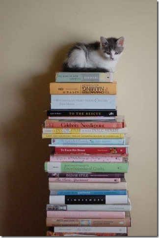 booksalekitten[1]